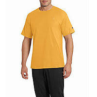 <b>Men's</b> Champion - JCPenney