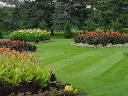 oc lawn care lawn care landscaping services in orange county project galleries