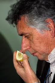 (AP Photo/Joe Ray). MODICA, Sicily In southern Sicily, lemon and orange groves seem to line every road, but the idea of state-sponsored professional lemon ... - lemon_man