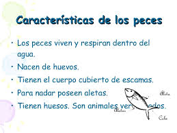 http://cplosangeles.juntaextremadura.net/web/edilim/curso_2/cmedio/animales02/peces02/peces02.html