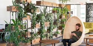 Greenery NYC Does Office Plants Differently We Are Designers And Horticulturists With A Mission To Bring The Beauty Of Nature Indoors Minus Mess