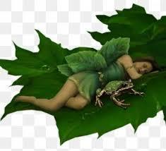 Fairy Elf <b>Flower Fairies</b> Fantasy Mayer Chess, PNG, 676x676px ...