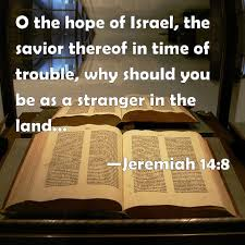 Image result for the hope of israel