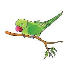 the parrot essay  english parrot essay for school kids the parrot essay – english parrot essay for school kids