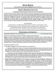 pricing analyst resume newsound co resume format for business business analyst resume objective casaquadro com resume for business analyst insurance resume objective for business