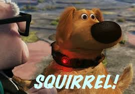 Image result for image of squirrel from the movie