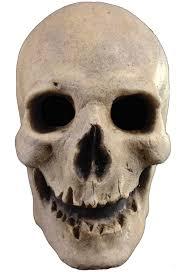 Antique Skull Halloween <b>Skeleton Mask</b>