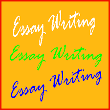 essay amp writing  universal campus channel how to write essay perfectly