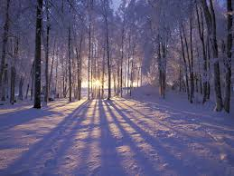 Winter Solstice 2019: The First Day of Winter | The Old Farmer