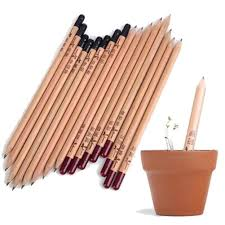 <b>8PCS idea germination pencil</b> set to grow sprouted mini DIY desktop ...