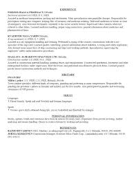 examples of resumes working holiday resume sample other working holiday resume sample resume template no work regarding 87 exciting sample resume template