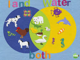 venn diagram practice with felt board app   mattbgomezeasy and fun way to practice creating venn diagrams   young kids using felt board  i print the example at the bottom of this post and the kids use that