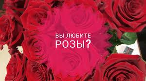Три новых розы. Attar Collection, Gucci, <b>Wide Society</b> - YouTube