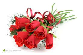 玫瑰花圖案的圖片搜尋結果