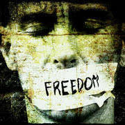Image result for freedom of expression