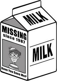 Image result for milk carton have you seen me
