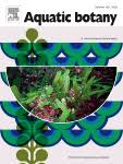 The annual production of the aquatic macrophyte Ranunculus ...