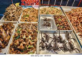 Image result for thailand fried bugs