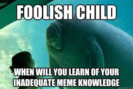 Foolish child when will you learn of your inadequate meme ... via Relatably.com