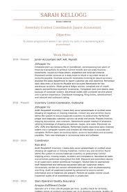 junior accountant ap ar payroll resume samples junior accountant resume