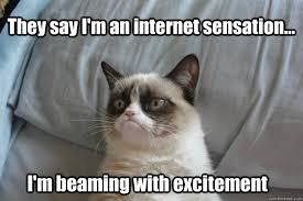 They say I'm an internet sensation... I'm beaming with excitement ... via Relatably.com