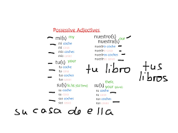 showme describe yourself in spanish possessive adjectives in spanish