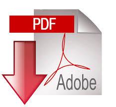 Resultado de imagen para icono de pdf
