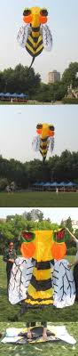 images about kites chinese dragon article bee kite