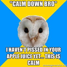 "Calm down bro"" i HAVEN'T PISSED IN YOUR APPLE JUICE YET... THIS IS ... via Relatably.com"
