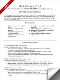 professional resume objective samplesprofessional resume objective samples professional resume objective samplesresume objective samples for exper