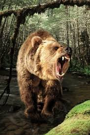 The bear of Daniel 7: 5 at http://pppministries.wordpress.com