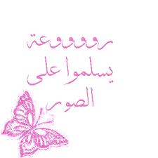 مكتبة صور وتصميمات  الكروان عماد عبد الحليم متجدد يوميا Images?q=tbn:ANd9GcRUKtPRWQby9Yy93iUHErxvrCvhLZI0AuHu0asNIbE2jUeAsdp7KQ