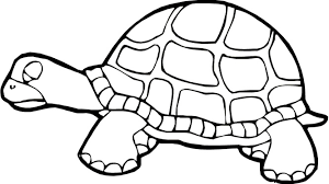 Small Picture Letter T words coloring pages for kids turtle