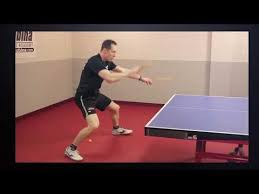 <b>Table Tennis Rubber</b> Reviews and Ratings - Revspin.net