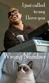 Image result for musical animal funnies