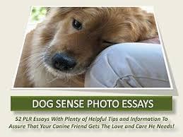 plr content source   premium private label rights portfolios  dog sense photo essays