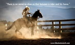 Inspirational Horse Quotes. QuotesGram