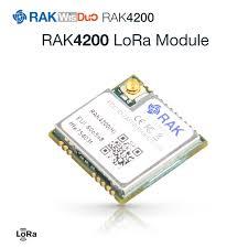 RAK Wireless Module Store - Amazing prodcuts with exclusive ...