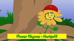 marigold rhyme flower rhymes for children nursery rhymes for marigold rhyme flower rhymes for children nursery rhymes for kids most popular rhymes hd