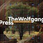 11 Years by The Wolfgang Press