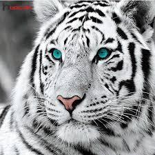HUACAN <b>Full</b> Square Diamond Painting <b>Leopard 5D DIY</b> Diamond ...