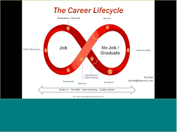 career life cycle career life cycle