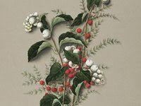dolly: лучшие изображения (3189) | Чучело совы, Дизайн ...