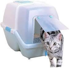 cat litter box cat litter box