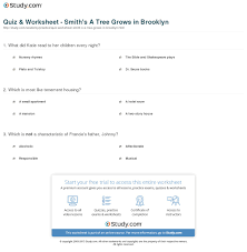 a tree grows in brooklyn essay prompts  a tree grows in brooklyn essay examples kibin