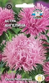 <b>Семена</b> СеДеК цветок <b>Астра Ангелина</b> пионовидная розовая