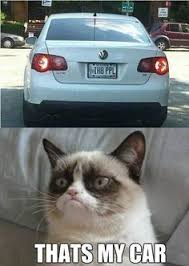 GRUMPY CAT on Pinterest | Meme, Grumpy Cat Meme and Grumpy Cat Quotes via Relatably.com