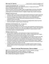 chief information officer cio resume examplecio resume example  chief information