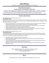 resume examples risk management   cover letter template receptionistresume examples risk management analyst resume examples o resumebaking examples cv examples curricula vitae examples curriculum