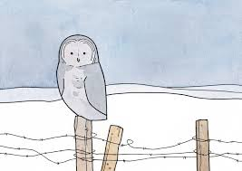 Great Gray Owl Drawing  W